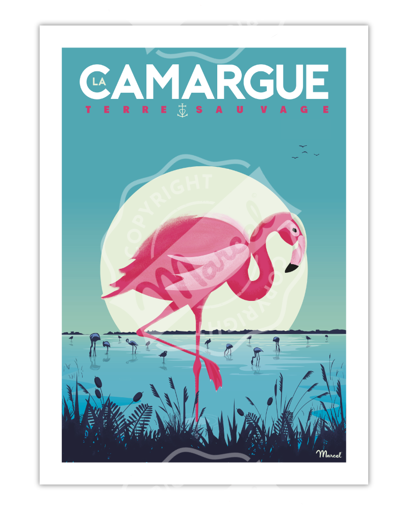 "Poster La Camargue ""Flamingos"""