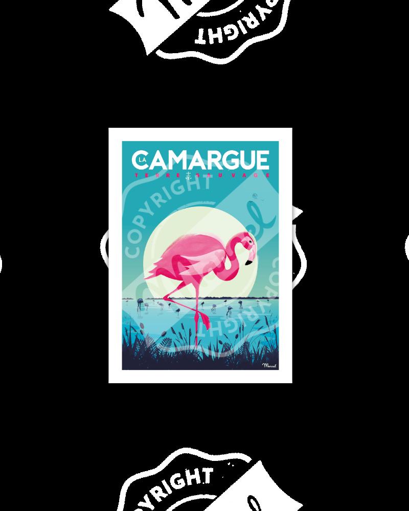 """Postcard CAMARGUE """"Flamingos"""""""