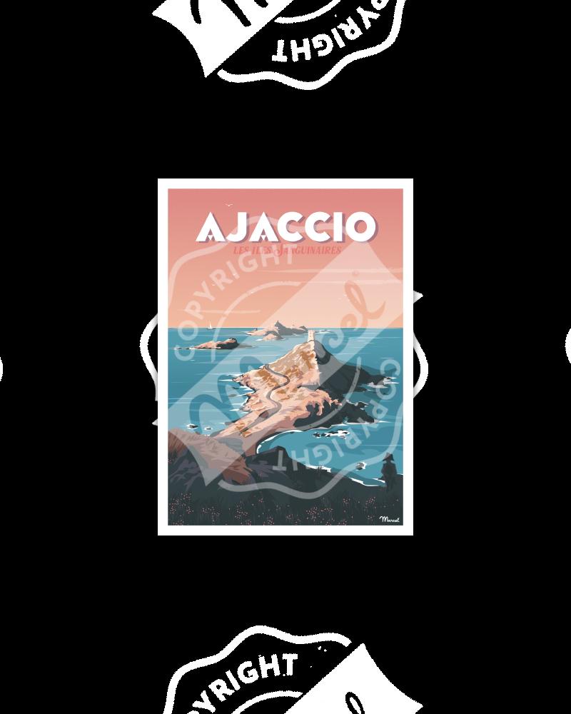 """Carte Postale AJACCIO """" Les Îles Sanguinaires """""""